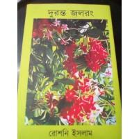 দুরন্ত জলরং